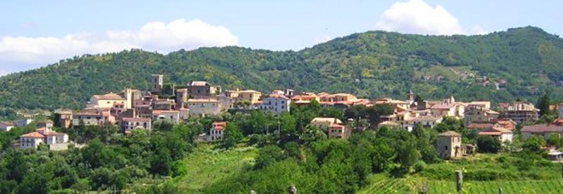 L'evento Greco di Tufo oro d'Irpinia a Chianche