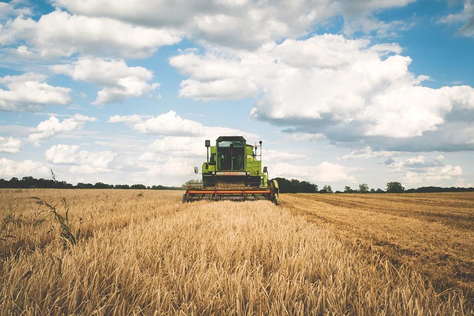 Le tecnologie della agricoltura 4.0