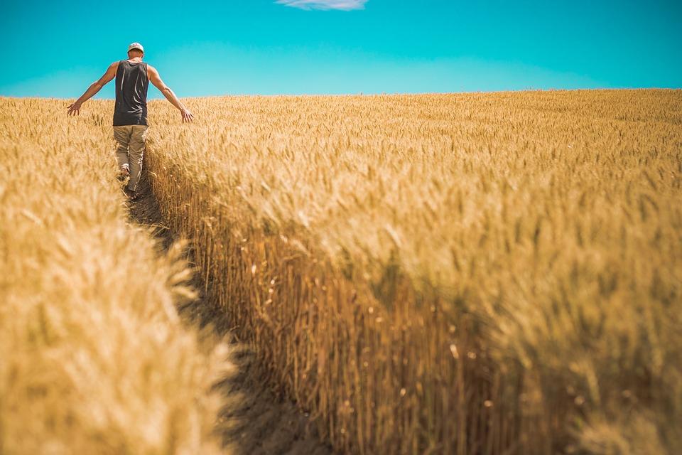i vantaggi della agricoltura 4.0