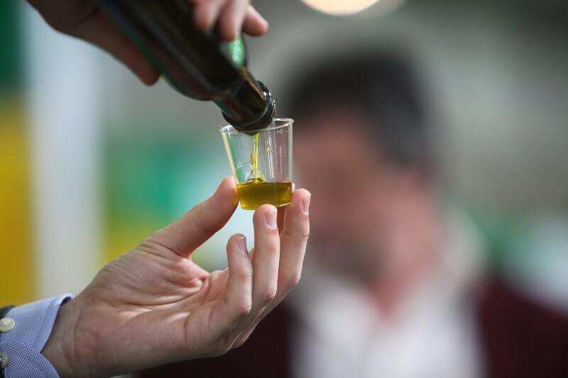 ecco come degustare l'olio