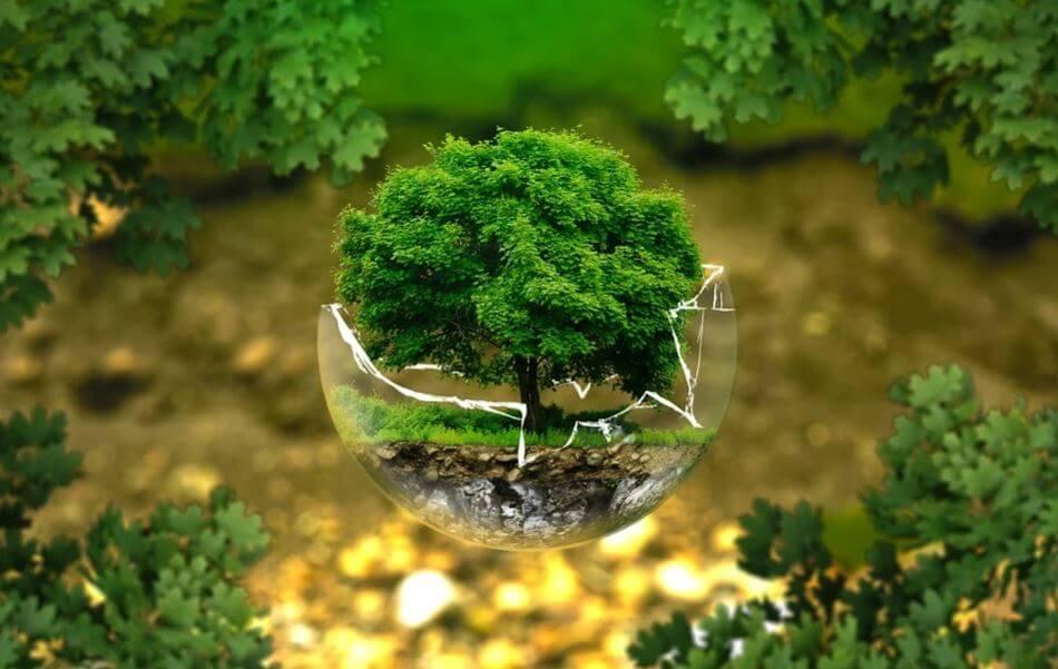 moda sostenibile a tutela dell'ambiente