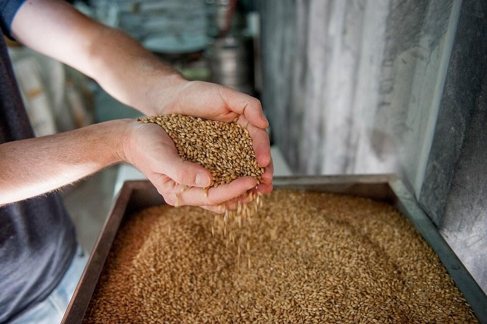 la produzione della birra