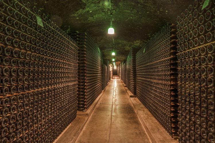 Le cantine di vino biologico