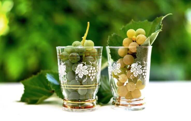 vino vegano fatto con uva bianca