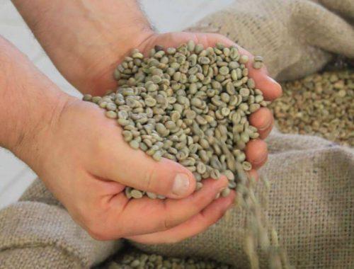 produzione del caffè espresso
