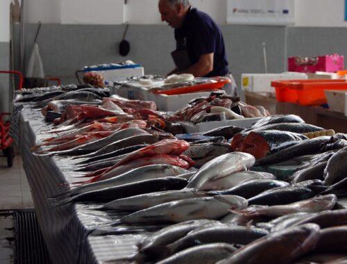 imballaggi di plastica per il pesce