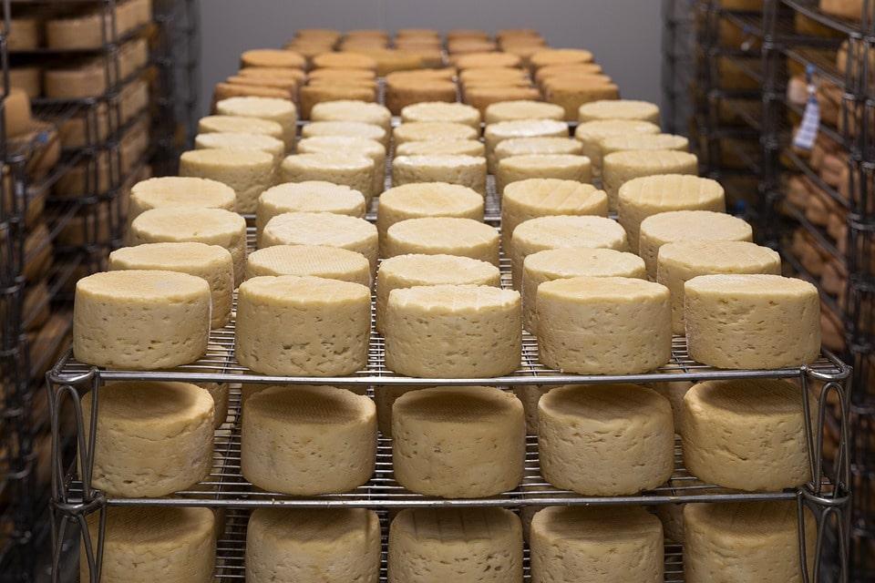 il formaggio è spesso soggetto a frodi alimentari